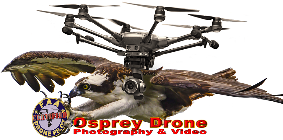 Osprey Drone Photography and Video